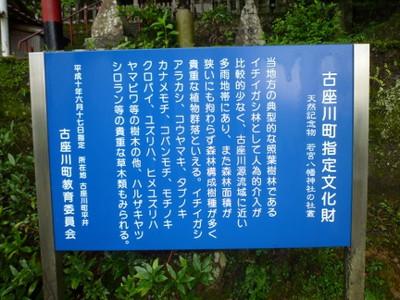Wap01_kozagawa_hirai_b3_2012